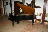 В Зале Охотника старинный рояль 1885 г. на усадьбе Верес